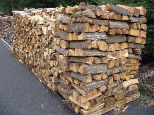 woody-biomass03
