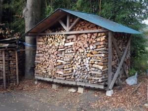 woody-biomass05
